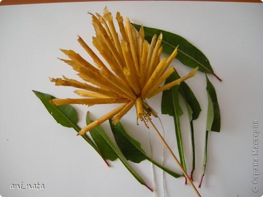 Мастер-класс Моделирование: Хризантемы из осенних листьев. Бумага гофрированная, Листья, Нитки Праздник осени. Фото 14
