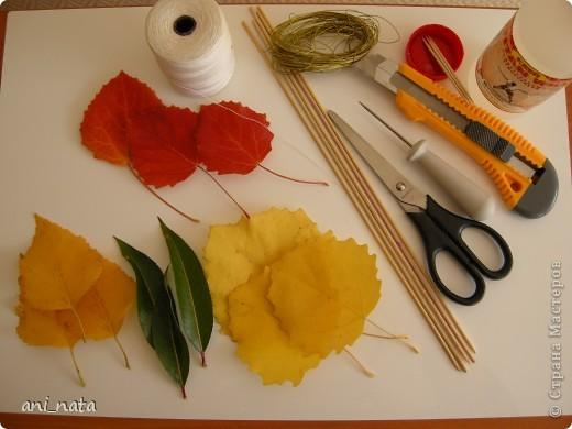 Мастер-класс Моделирование: Хризантемы из осенних листьев. Бумага гофрированная, Листья, Нитки Праздник осени. Фото 2